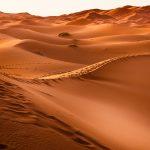 Desierto Cuaresma
